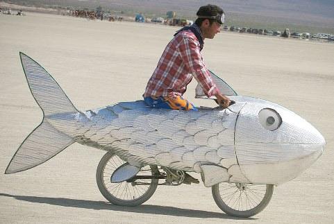 velorution-fish-bike